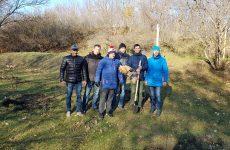 В краевой столице состоялся субботник по высадке деревьев в прибрежной зоне реки Ташла